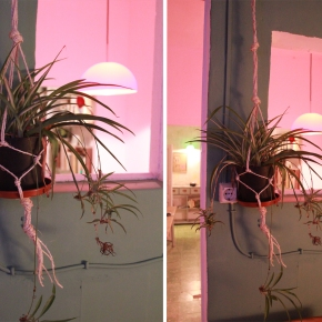 Minimal macrame, or how to hang a pot plant in 5 minutes