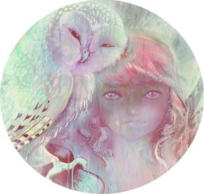 Owl Calendar 2013