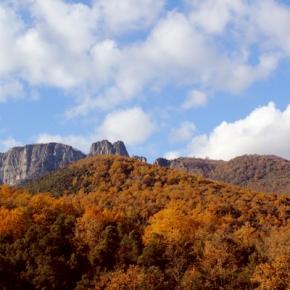 Autumn in Olot
